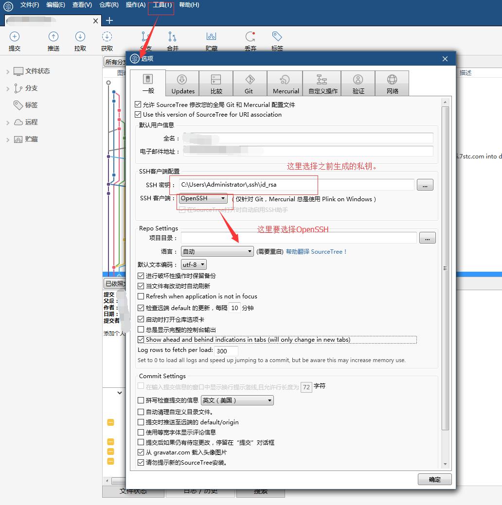 Sourcetree gitlab ssh key
